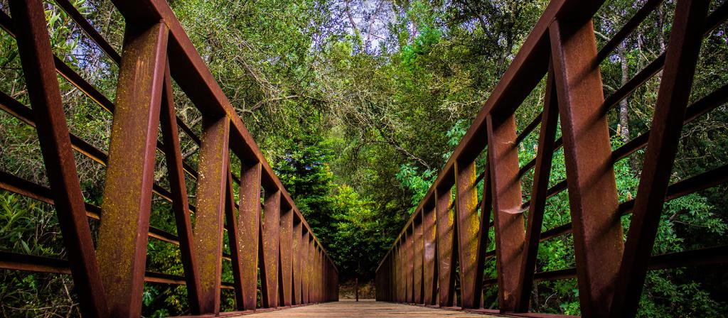 Photography El Dorado Hills